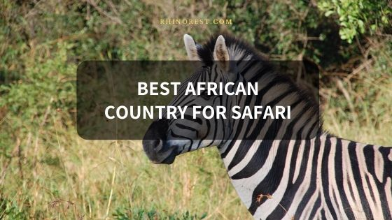 Facts about the Best African Country for Safari