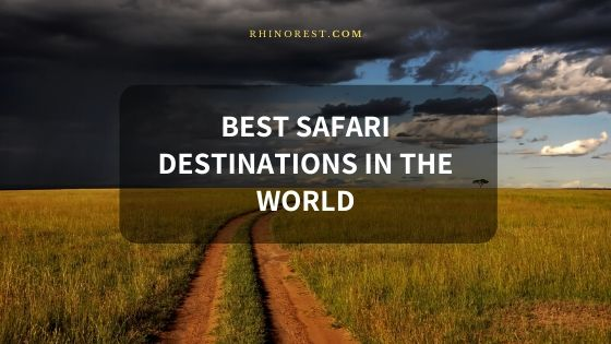 14 Best Safari Destinations in the World