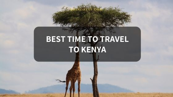 What is the Best Time to Travel to Kenya?