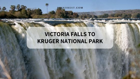 Victoria Falls to Kruger National Park – Cheapest & Easiest