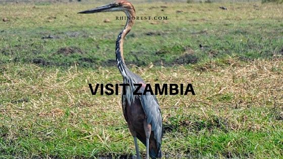 Best Place and Time to Visit Zambia Cheap