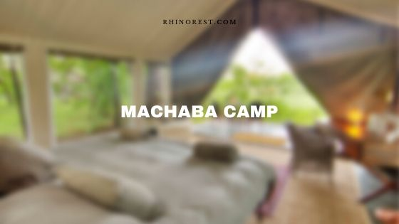 Machaba Camp Stay and Features – Botswana Safari