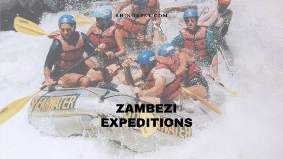 Zambezi Expeditions – A Guide Based of Reviews