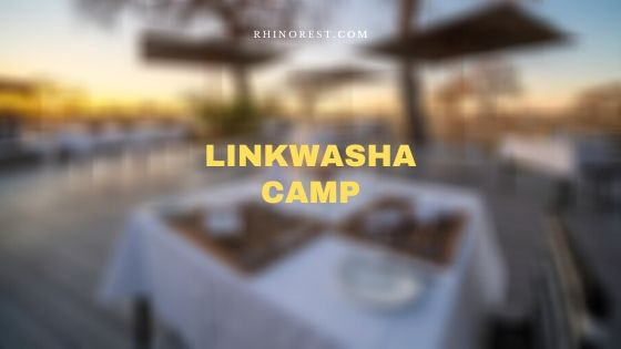 Linkwasha Camp Zimbabwe – Reviews and Features