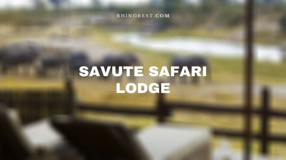 Savute Safari Lodge Botswana – Reviews | Features