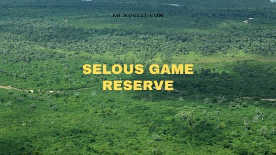 Selous Game Reserve Travel and Safari