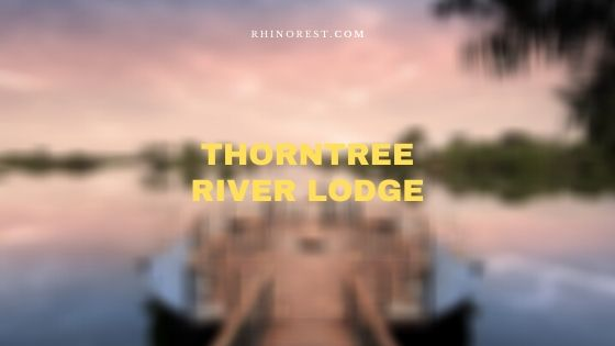 Thorntree River Lodge Zambia – Reviews | Features