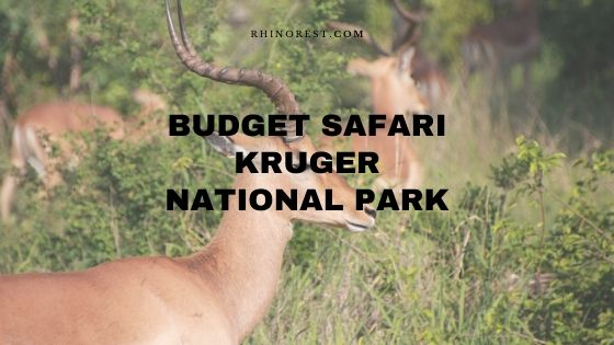 15 Budget Safari Plans in the Kruger National Park