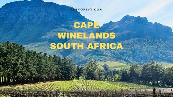 Cape Winelands South Africa Travel Plan
