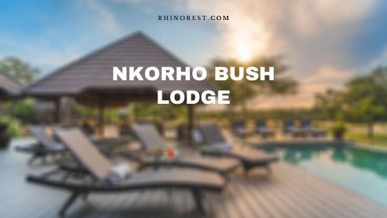 Nkorho Bush Lodge – Reviews | Amenities | Rates