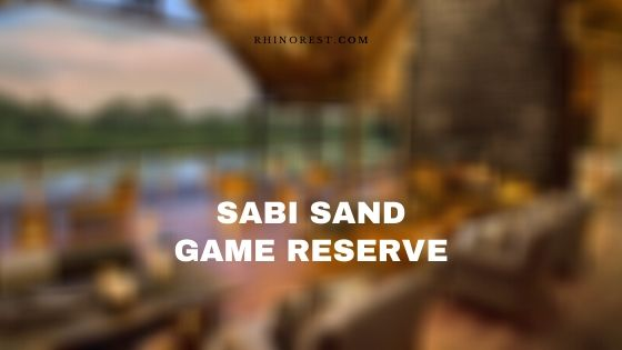 Sabi Sand Game Reserve South Africa – Reviews | Features
