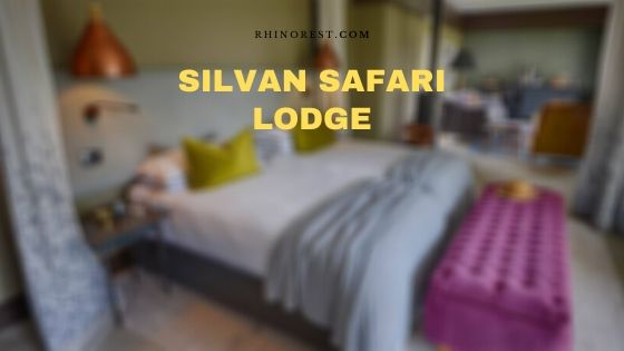 Silvan Safari Lodge – Reviews | Amenities | Highlights