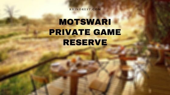 Motswari Private Game Reserve – Amenities | Reviews