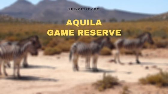 Aquila Private Game Reserve – Safari | Reviews | Address