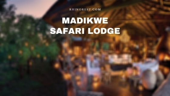Madikwe Safari Lodge – Reviews | Directions | Amenities