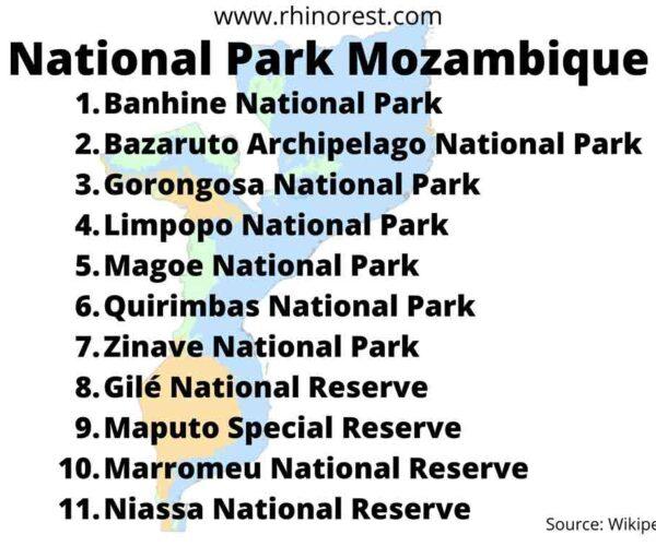 10 Best National Parks Mozambique for Adventurous Safari