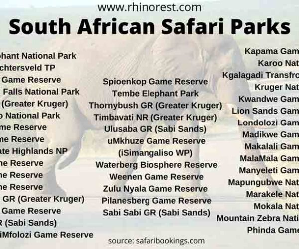 22 Best South African Safari Parks with Adventure