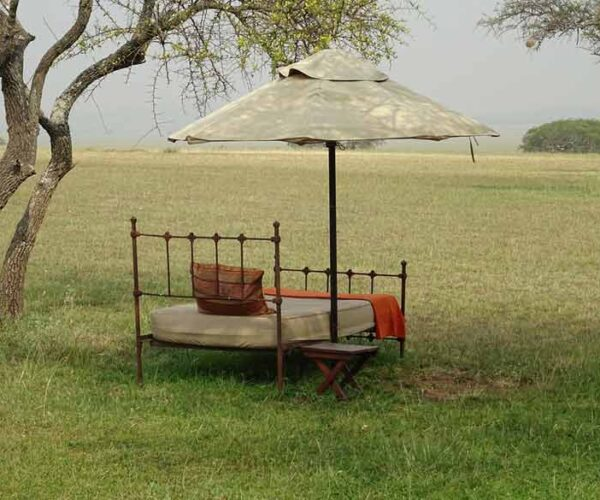 Lewa Safari Camp Kenya – Reviews | Location | Activities