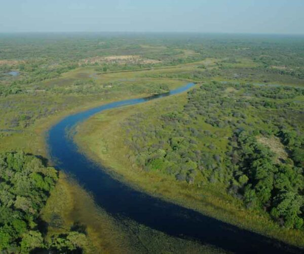 Okavango River – Facts | Delta | Basin | Map